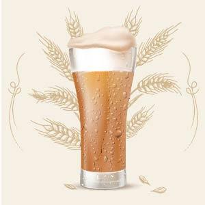American Amber Ale 12 color srm cerveza