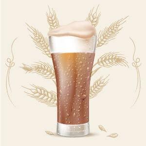 Dunkel Lager o Münchner Dunkel 16 color srm cerveza