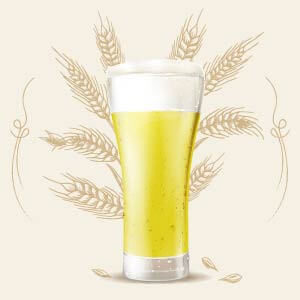 Hefe Weizen 5 color srm cerveza