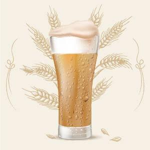 Indian Pale Ale (IPA) 10 color srm cerveza