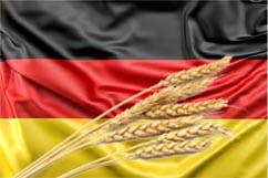 bandera alemania origen de las cervezas trigo