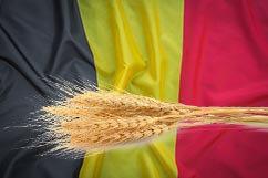 bandera belgica origen de las cervezas Cebada