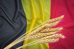 bandera belgica origen de las cervezas Trigo