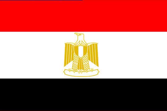 bandera egipto el paraiso de la cerveza