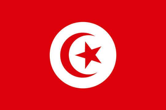 bandera tunez el paraiso de la cerveza