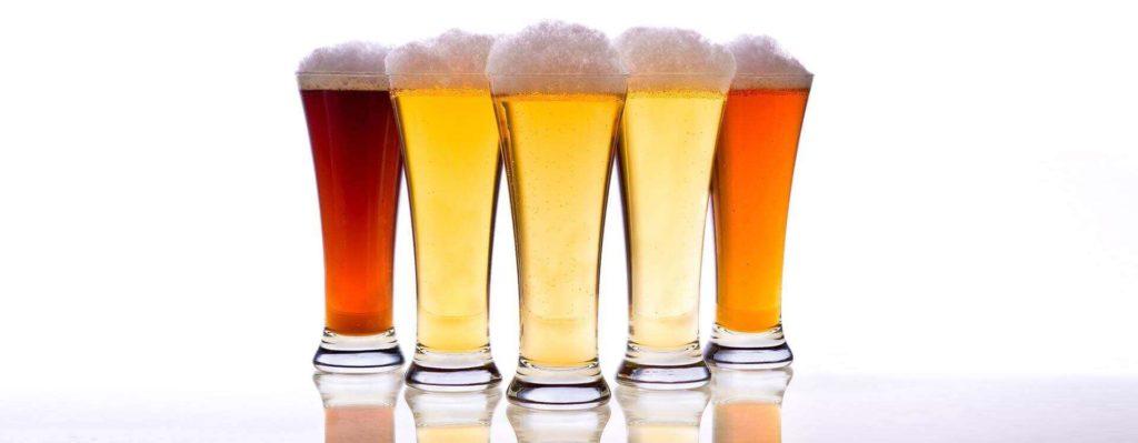 Todo sobre la cerveza